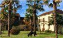 Tillac  Maison 15 pièces  395 m²