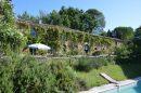 Castelnau-Magnoac  Maison 440 m² 12 pièces
