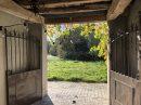 254 m² Maison  Trie-sur-Baïse  9 pièces