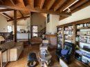 Maison Masseube  255 m² 11 pièces