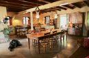 Maison SON ESPANOL  10 pièces  400 m²