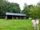 Maison  220 m²  10 pièces