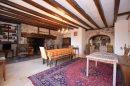 Maison Pleaux  9 pièces  260 m²
