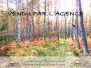 Forêt mixte de 13 ha