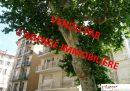 2 pièces Toulon Haute Ville  39 m² Appartement