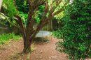 117 m² Maison Morsang-sur-Orge  5 pièces