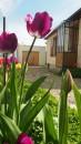Pontoise Cordeliers 4 pièces 67 m² Maison