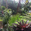 Maison  TARAVAO Presqu'île 3 pièces 90 m²