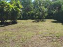 TOAHOTU Presqu'île 108 m² Maison 4 pièces