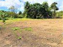 Terrain Papeari Presqu'île 0 m²  pièces