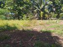 Terrain  Afaahiti Presqu'île 0 m²  pièces