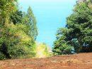 Terrain 0 m² Punaauia Punaauia  pièces
