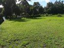 A VENDRE, TAUTIRA,TRES BEAU TERRAIN PLAT DE 1225 M²