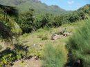 Moorea 2 Terrains a batir à Maatea