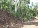 A Moorea à Paopao, terrain agricole de 3250m²