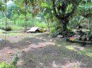 Terrain 0 m²  pièces Teahupoo Presqu'île