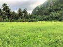 Terrain 0 m² Tautira Presqu'île  pièces