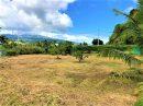 Terrain 0 m² Faaone Presqu'île  pièces