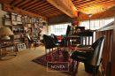 canut  volumes atypique   croix rousse  loft