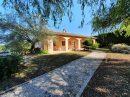 Maison  Castelnau-d'Estrétefonds Secteur 3 253 m² 8 pièces