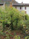 Maison 65 m² 4 pièces Baume-les-Dames Secteur Baume Les Dames