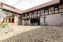 Molsheim ACHENHEIM, HANGENBIETEN, DUPPIGHEIM, MOLSHEIM 8 pièces 354 m² Maison