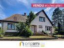 Maison 290 m² Lingolsheim  8 pièces