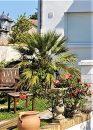 Le Havre  6 pièces  200 m² Maison
