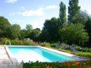 Maison 420 m² Saint-Flovier  14 pièces