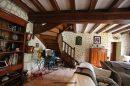 Maison Neuillé-Pont-Pierre  350 m² 13 pièces