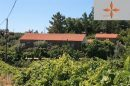 193 m² 8 pièces Maison Castelo Branco