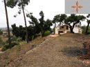 5 pièces 276 m² Maison Santarém