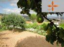 4 pièces Coimbra  522 m²  Maison