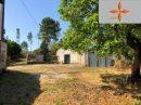 2 pièces 350 m² Castelo Branco  Maison