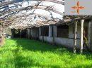 Petite ferme avec une maison rustique