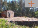 Maison 4 pièces Castelo Branco  274 m²