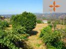 Castelo Branco  66 m²  Maison 3 pièces
