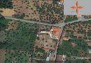 Maison Castelo Branco  314 m² 3 pièces