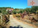 Maison  Castelo Branco  4 pièces 121 m²