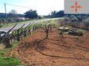 Terrain Castelo Branco  160 m²  pièces