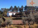Terrain  Castelo Branco   pièces 98 m²