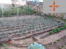 pièces 190 m²  Terrain Leiria