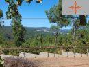 132 m² Terrain  pièces Castelo Branco