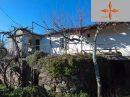 pièces Castelo Branco  193 m² Terrain