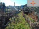 Castelo Branco   pièces Terrain 193 m²