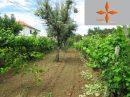 Petite ferme rurale avec un terrain de plus de 3000 m2