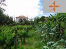 Castelo Branco   36 m² Terrain  pièces