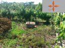 Terrain  pièces Castelo Branco  100 m²