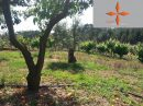 Castelo Branco  100 m² Terrain  pièces