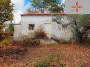 Castelo Branco  Terrain  42 m²  pièces